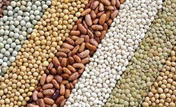 Se dictará el Curso de Perito Clasificador de Cereales, Oleaginosos y Legumbres en Reconquista.