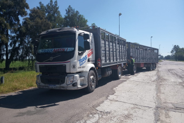 camionera mujer camionera camión jaula.jpg