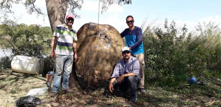 Raya gigante Pablo Scarpín Walter Locatelli y Pablo Chacón abril 2019 pan.jpg