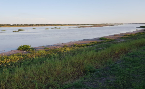 Histórico también lo que pasa con el río: 1,56 metros en el muelle de Prefectura Reconquista y se profundiza la bajante histórica.