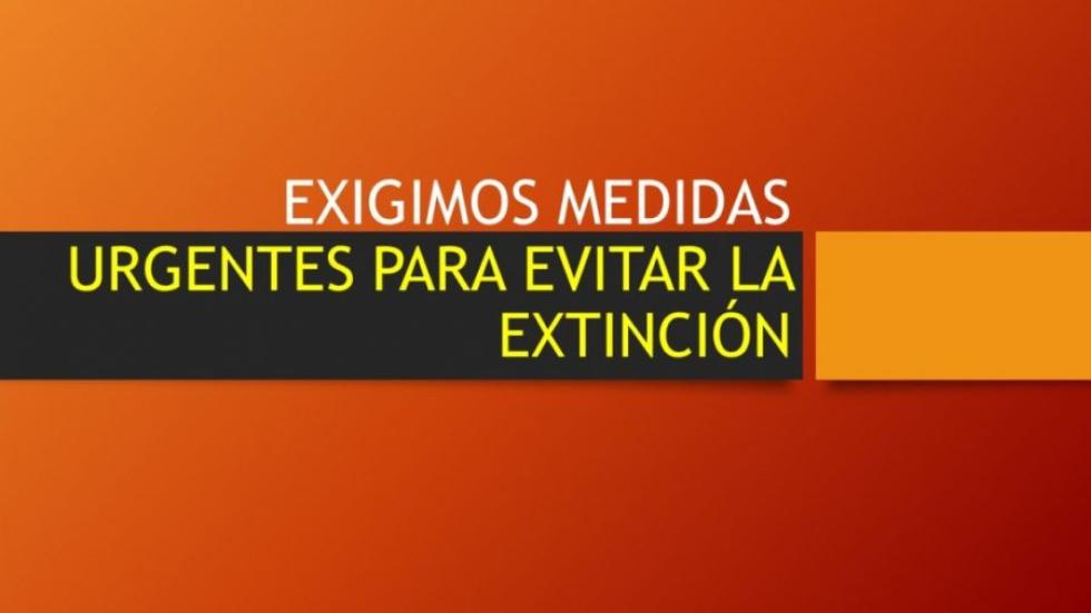 EXIGIMOS-MEDIDAS-URGENTES-PARA-EVITAR-LA-EXTINCION-1030x579-e1622034632536.jpeg