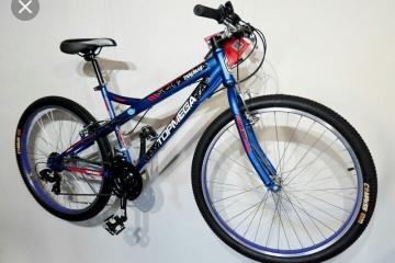 bicicleta robada.jpg