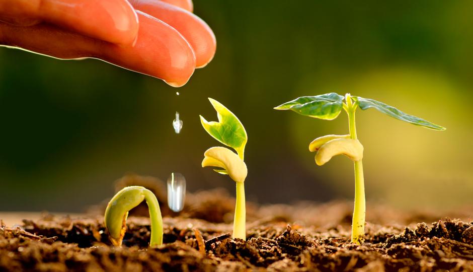 Invitan a una capacitación en sistemas agroalimentarios y agronegocios con Oscar Osan.