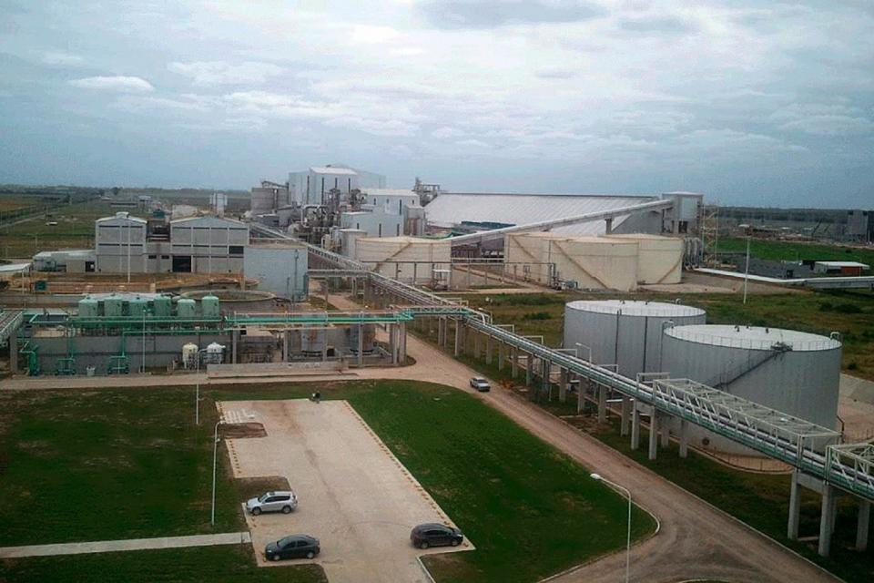 Renova vicentin Glencore planta industrial.jpeg