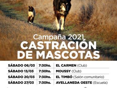 CampanaVAC-AVDA-03-768x576.jpg