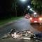 Camino Héroe de Malvinas: Un motociclista chocó al auto que iba adelante
