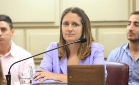 Desde la Cámara de Diputados piden que el Ejecutivo provincial informe sobre la situación de los empleados cesanteados en el Registro Civil.