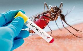 Entre todos podemos evitar la aparición del Dengue. Recomendaciones a tener en cuenta.