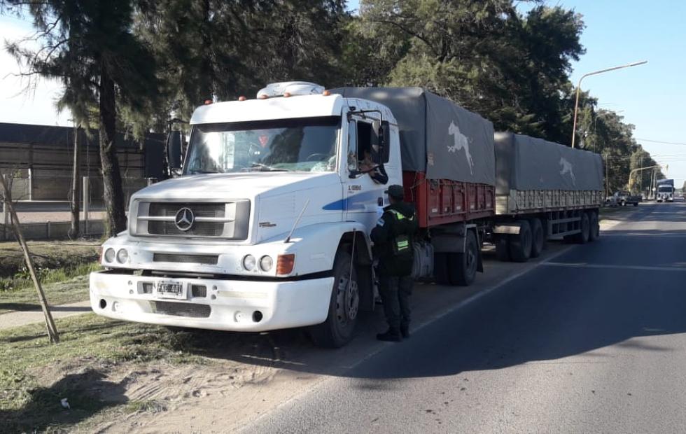 Cuatro camiones retenidos por personal de Gendarmería este sábado.