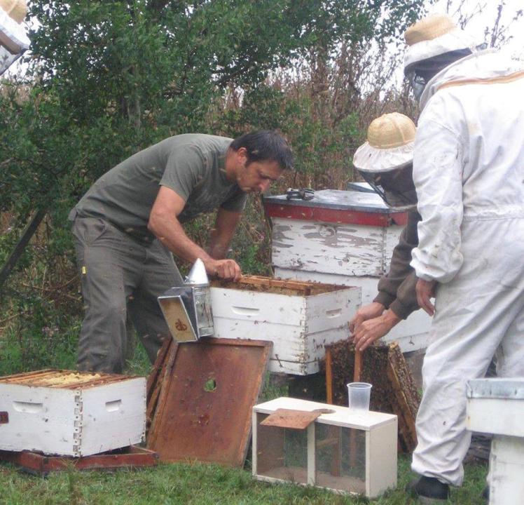 Diego Sandrigo apicultor.jpg