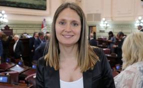 La diputada María Laura Corgniali dijo que  no van a permitir un manejo discrecional de los recursos cuando opinó sobre la aprobación de la Ley de Necesidad Pública.