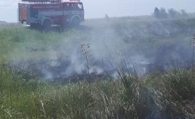 Se incendió un campo sobre la Ruta 31.