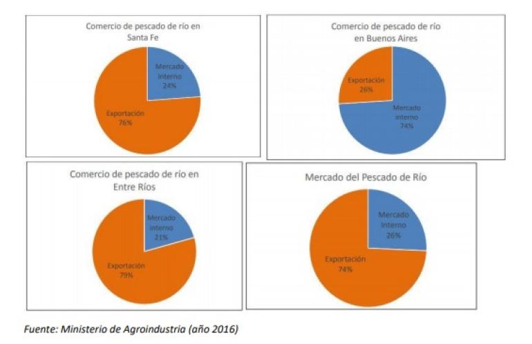 Exportar pescado de río: un crimen ecológico y social Por: Ríos Sanos.