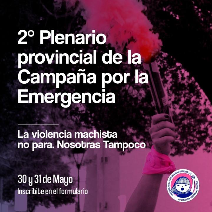 plenario emergencia 1.jpg