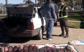 Los Pumas cuentan y muestran con fotos sus últimos procedimientos en Reconquista, Villa Ocampo, Calchaquí y otras localidades de la provincia.