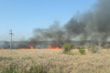 incendio pastizales 29 de agosto.jpg