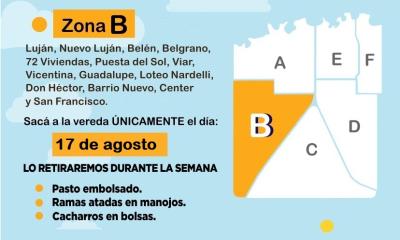 Patio Limpio 2020 en Reconquista: Quienes deberán sacar sus ramas, pastos y cacharros la semana próxima.