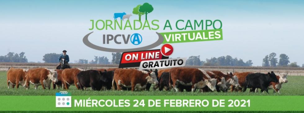 IPCV jornada ganadera