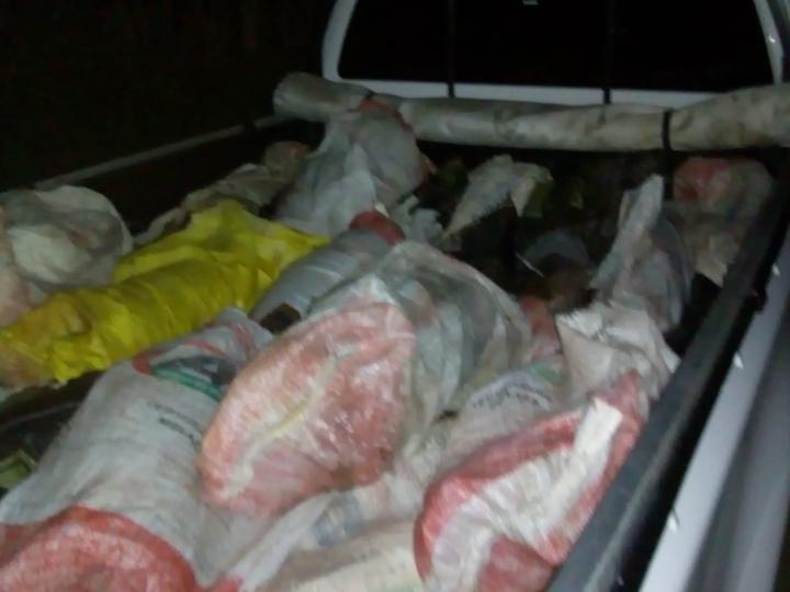 surubíes secuestrados por prefectura reconquista.jpeg