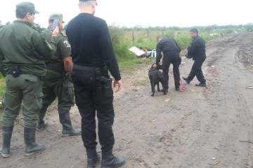 09052019 búsqueda de Juan Carlos Fernández en Romang perros.jpg