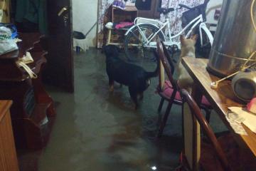 24042019 lluvia agua adentro de la casa b.jpg