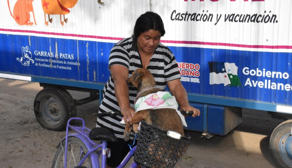 Se pospuso la castración de mascotas prevista para este sábado en Avellaneda.