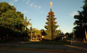 A las 21:15 hoy Reconquista encenderá su árbol de Navidad con fiesta en la plaza 25 de Mayo. Mañana en Avellaneda.