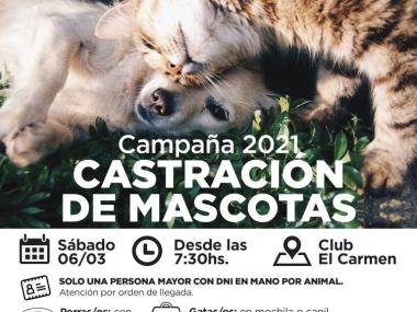 CampanaVAC-AVDA-Marzo2021-01-768x576.jpg